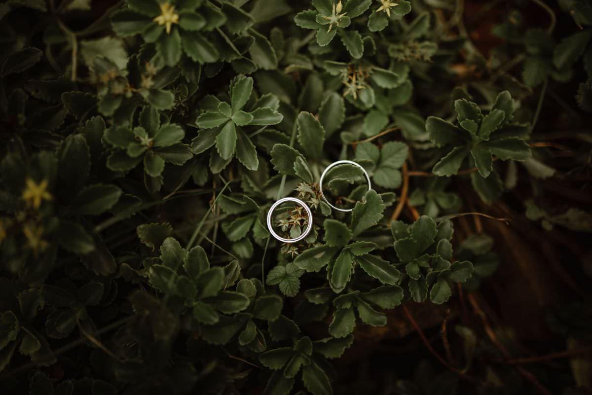 wedding rings detail photo